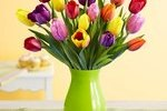 http://temp_thoughts_resize.s3.amazonaws.com/dd/e67f7aec25f9242771e760c4b4bedf/flowers-gift.jpg